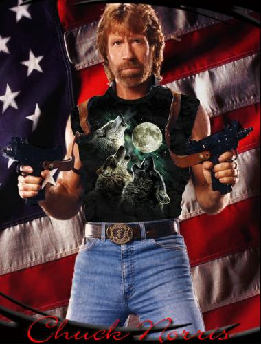 chuck-norris-three-wolf-moon