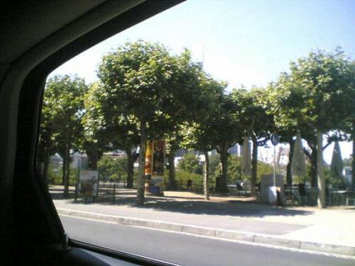 Di 19.06.2007 15:33 Foto(1074)