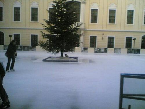 Mi 21.02.2007 16:03 Foto(892)